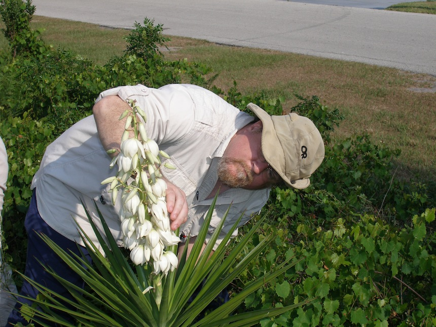 Brad inspects the prickly Yucca aloifolia