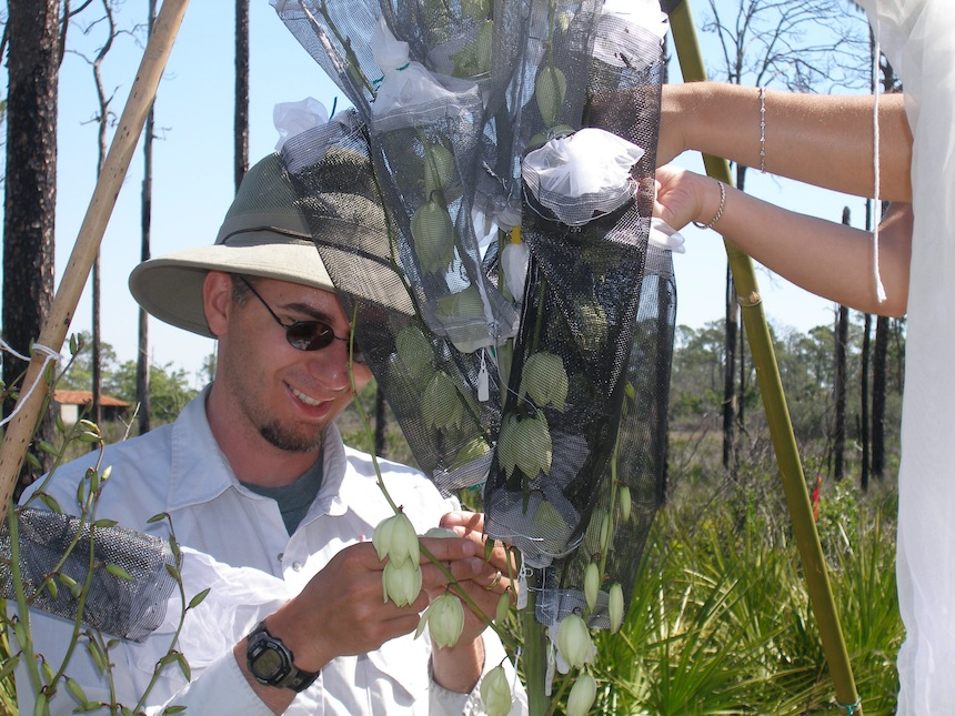 Dave installing leaf-footed bug cages