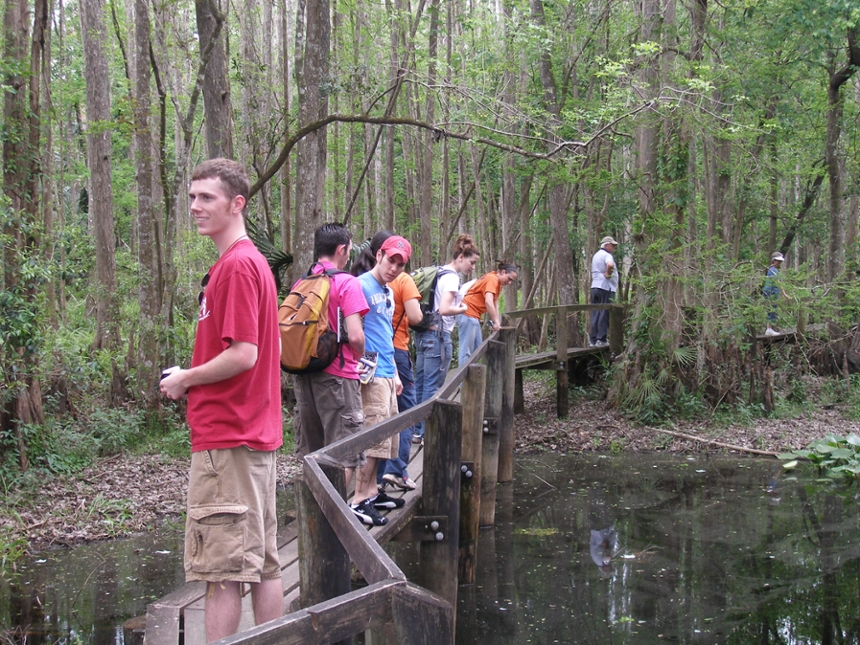 Checking out a cypress swamp